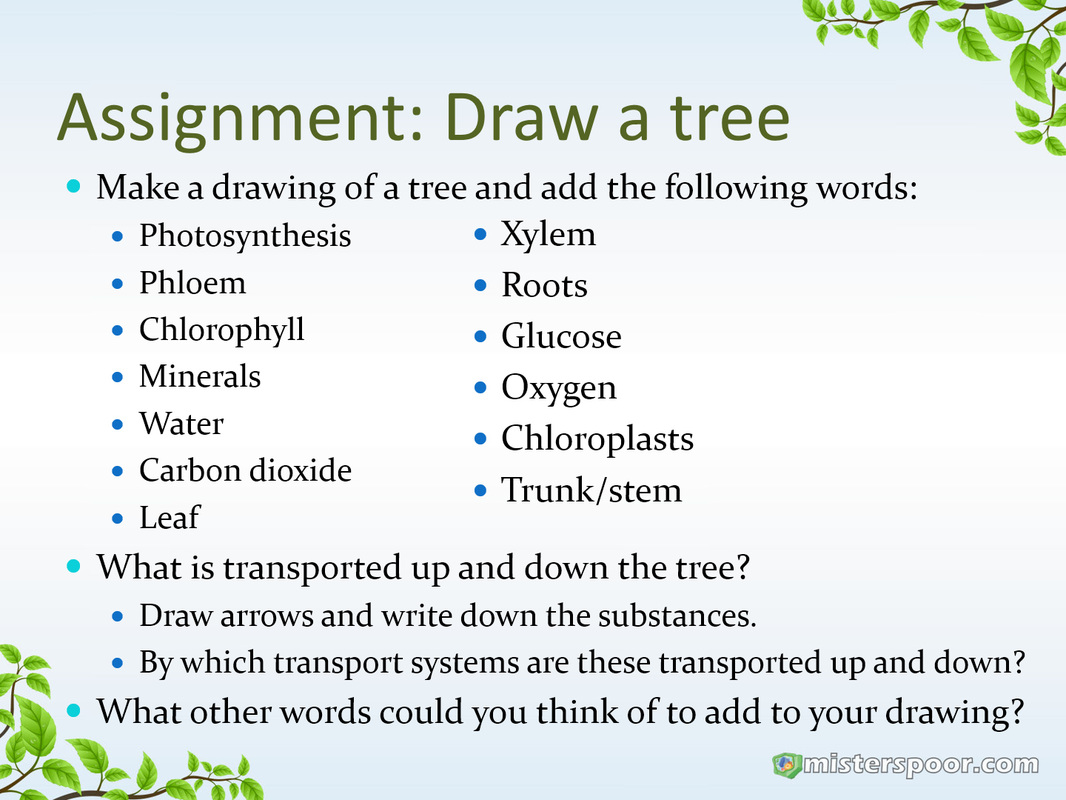 Assignment tree